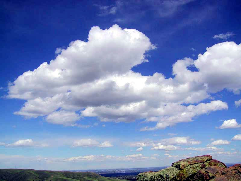 http://www.weatherreport.com/images/Cumulus_clouds_in_fair_weather.jpg